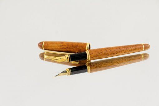 Write_pen