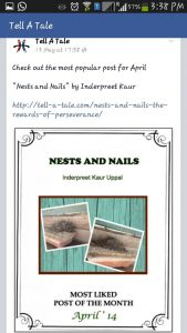 Nails & Nests