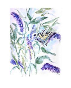 Sweet T watercolors