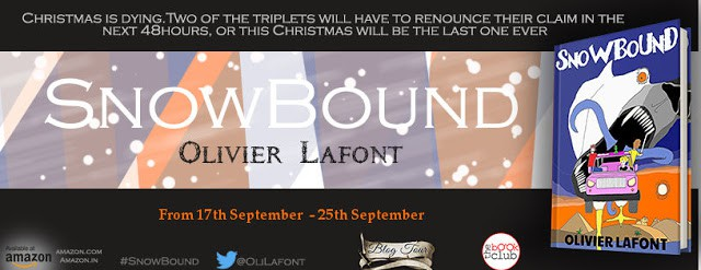 banner of snowbound blog tour